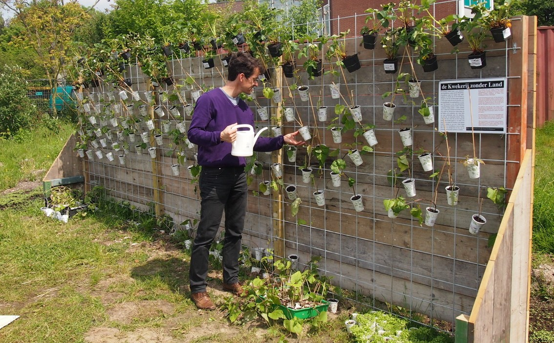 Frank Stroeken geeft de plantjes water