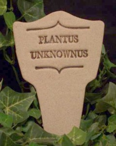 Plantus Unknownus